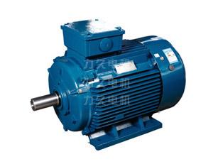 YP2系列宽频三相异步电动机