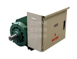 DYG系列高起动转矩多速电动机