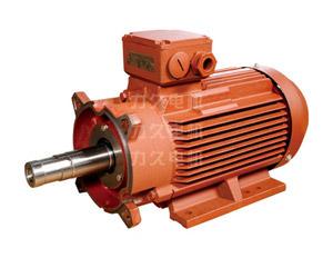 高效、超高效真空泵专用电机