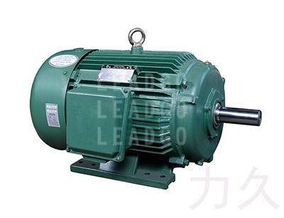 NEMA  PREMIUM高效三相异步电动机(A、B设计)
