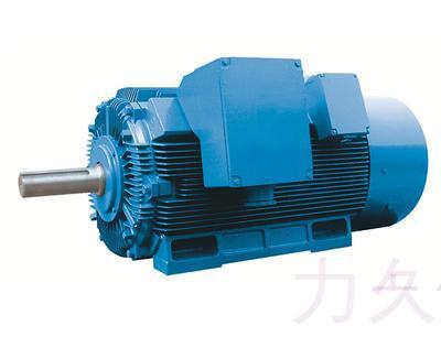 YX2 系列高压高效三相异步电动机